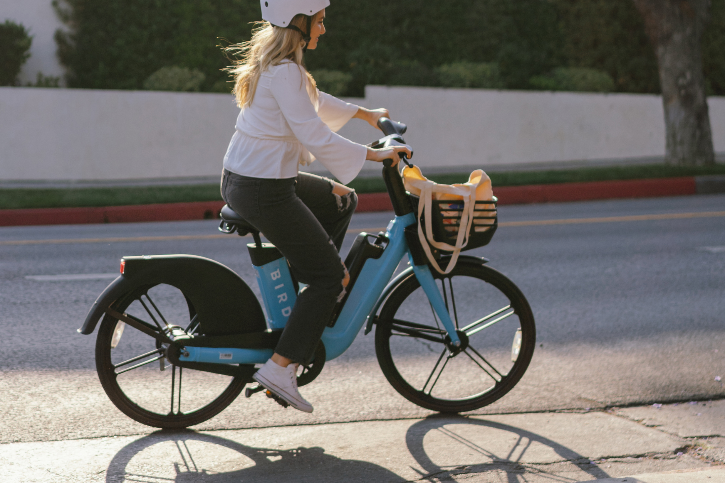 bird bikeshare