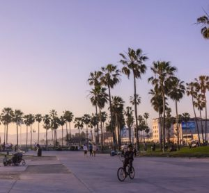 Cyclist in Los Angeles counts in 22% increase in cycling in the city