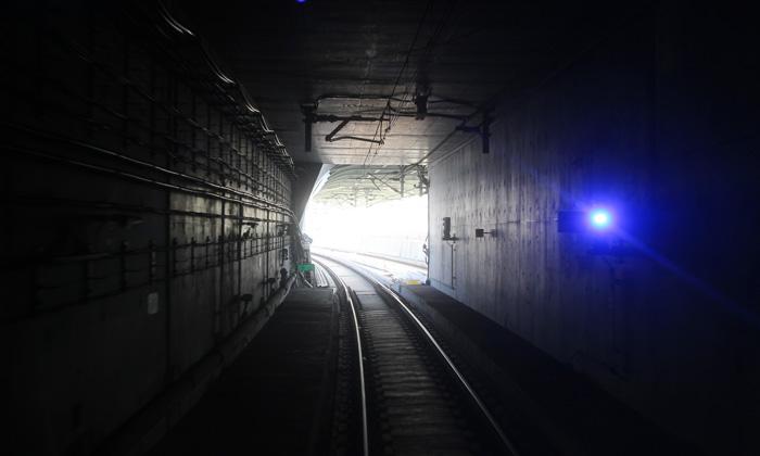 Mass Transit Railway's South Island Line celebrates one-year anniversary