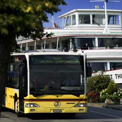 Trapeze Bus