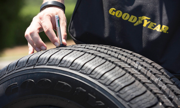 Institutional Holdings and Trade Data for The Goodyear Tire & Rubber Company (GT)